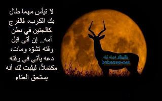 2015_1390170312_246.jpg