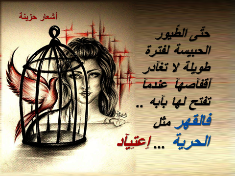 ��� ���� ����� ��� - ���� ��� ���� ����� - ������ ��� ���� ����� ���- ��� ����� ��� ���� ��� ������� 2015_1390214702_171.
