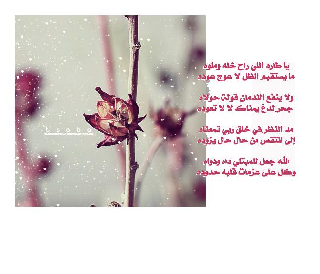 ��� ���� ����� ��� - ���� ��� ���� ����� - ������ ��� ���� ����� ���- ��� ����� ��� ���� ��� ������� 2015_1390214708_111.