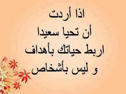2015_1390307714_561.jpg
