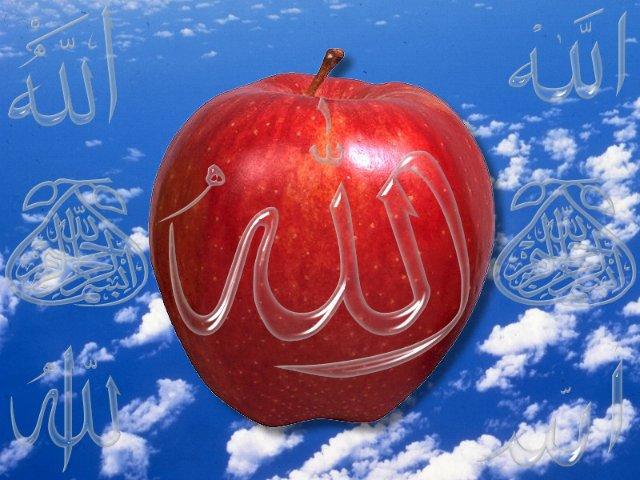 صور دينية عن الرسول(ص)2016,صور دينية اسلامية مكتوب عليها كلام,صور اسلامية جميلة,صور دينية متحركة2016 2015_1390931986_247.