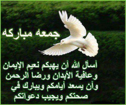 صور اسلامية دينية جديدة 2015_1390950950_390