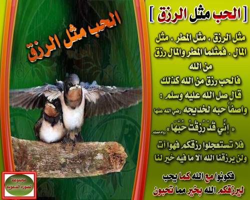 ��� ��� ��� ������� 2016 , ������ ��� ��� ������� , Islamic photos ����� ��������� 2015_1391473266_726.
