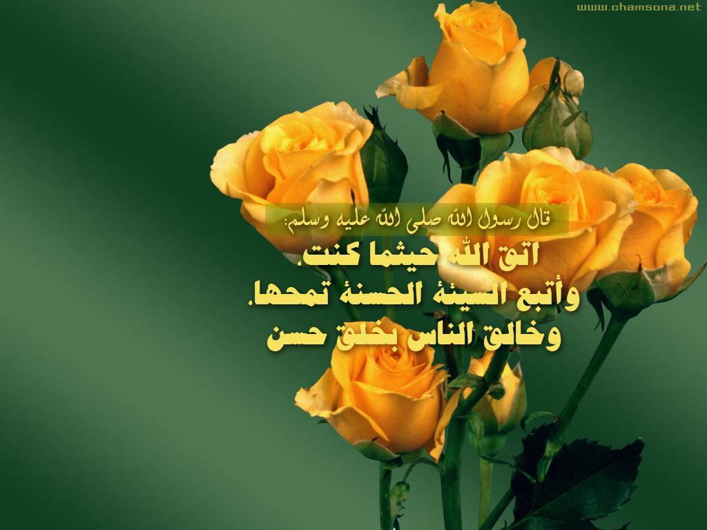 صدق رسول الله صلى الله عليه وسلم .. 2015_1391567777_375