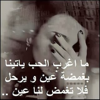 2015_1393714639_459.jpg