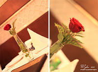 ��� ��� ���� ����� 2016 , ���� ������ ��� ������� ���� ���� ������ ���� Rosa damascena 2015_1402010260_379.