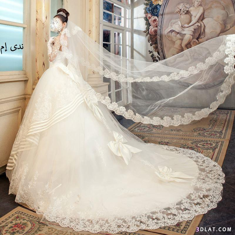 ���� ��� ������ ����� ���� ����  , ������ ��� ����� , Wedding Dresses 2015_1410132595_489.