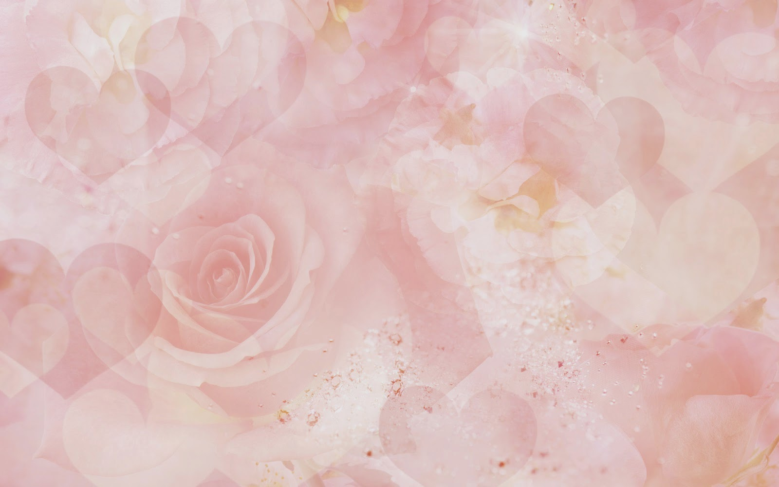 ��� � ������ ���� ����� ����� , ���� ��� ������������ 2016 hd , Pictures of flowers 2015_1410136909_489.