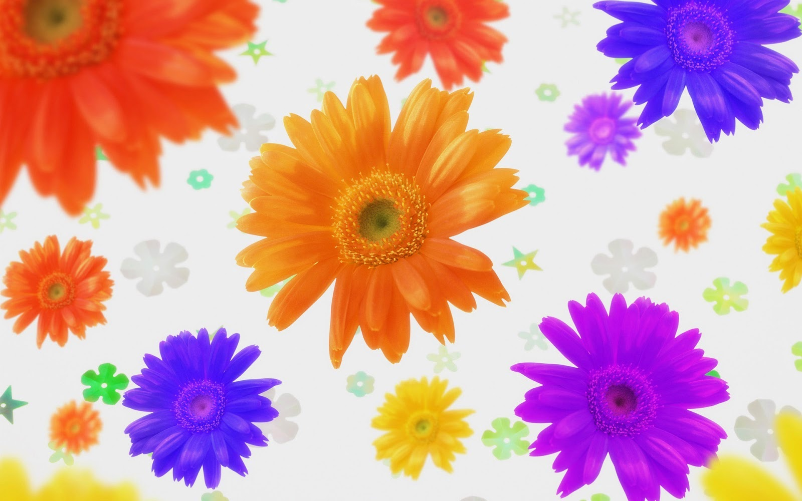 ��� � ������ ���� ����� ����� , ���� ��� ������������ 2016 hd , Pictures of flowers 2015_1410136910_566.