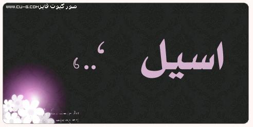 صور اسم اسيل عربي و انجليزي مزخرف , معنى اسم اسيل وشعر وغلاف ورمزيات 2016