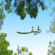 صور اسم رفيف عربي و انجليزي مزخرف , معنى اسم رفيف وشعر وغلاف ورمزيات 2016