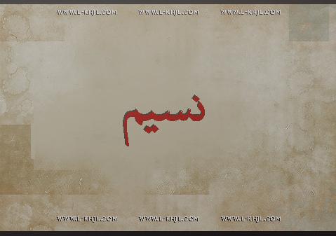 صور اسم نسيم عربي و انجليزي مزخرف , معنى اسم نسيم وشعر وغلاف ورمزيات 2016