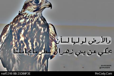 صور اسم زهران عربي و انجليزي مزخرف , معنى اسم زهران وشعر وغلاف ورمزيات 2016