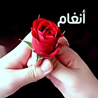 صور اسم انغام 2016 معني الاسم وخلفيات واغلفة للاسم