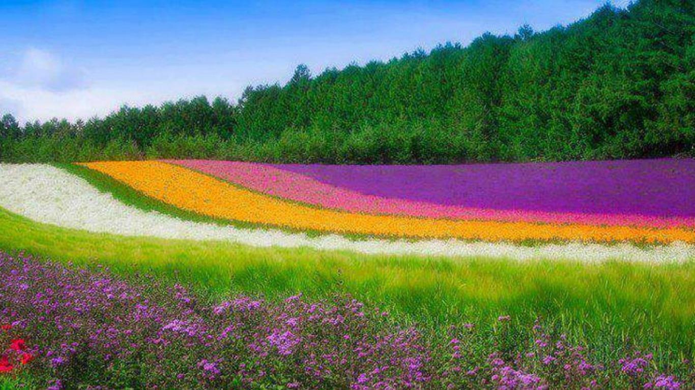 خلفيات طبيعية متنوعه صور من الطبيعة تفتح النفس صقور الإبدآع