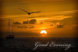 ��� ���� �����  ����� ��� - ������ ������ ������ Good Evening 2015_1419613015_624.