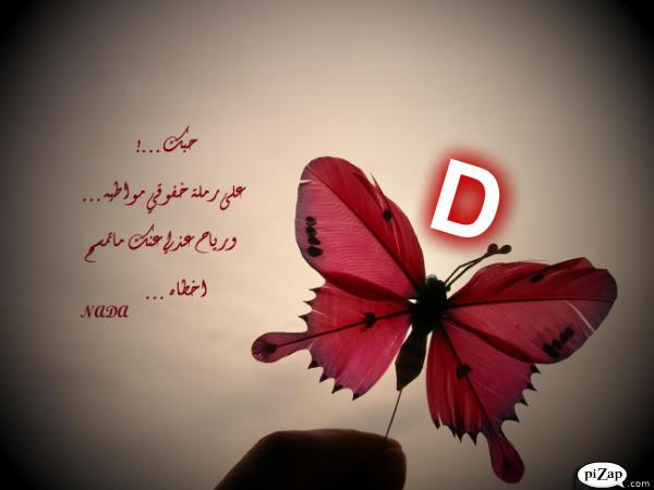 صور حرف D , صور حرف D مزخرفة , خلفيات جديدة 2016 letter D piCtures new_1420623717_416.j