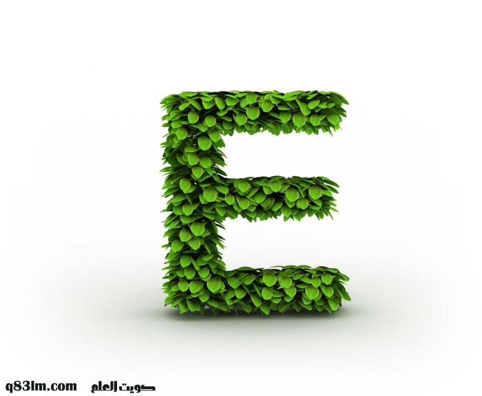 ��� ��� E , ��� ��� E ������ , ������ ����� 2016 letter E pictures new_1420668480_796.j
