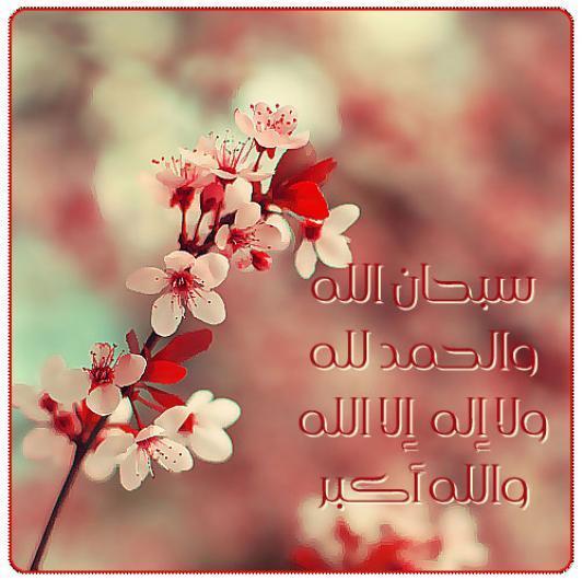 صور بطاقات اسلامية 2017 ، صور اسلامية مكتوب عليها ، بطاقات بطاقة اسلامية 2016 new_1421343928_871.j