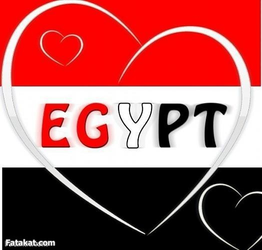 ��� ��� ��� , ������ ������� ��� , ��� ������ ���� ��� 2016 ,Egypt new_1422287482_832.j