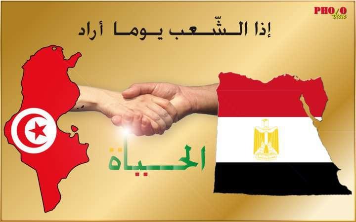 ��� ��� ���� , ������ ������� ���� , ��� ������ ���� ���� 2016 , Tunisia new_1422298484_661.j