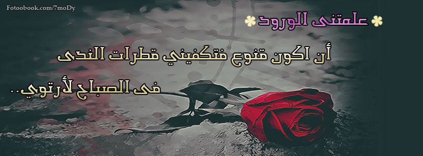 ����� ��� ��� ����� ���� ���� ���  , ���� ��� ��� ����  , ����  ������  ����� 2016 new_1423872464_568.j
