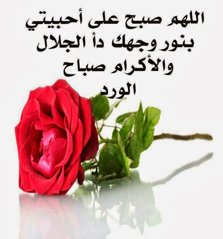 خلفيات واتس اب صباح الخير new_1423961936_205.j