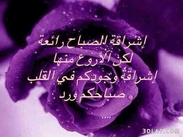 خلفيات واتس اب صباح الخير new_1423961936_393.j