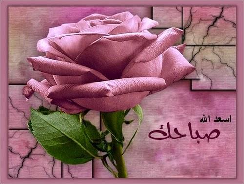 خلفيات واتس اب صباح الخير new_1423961936_679.j