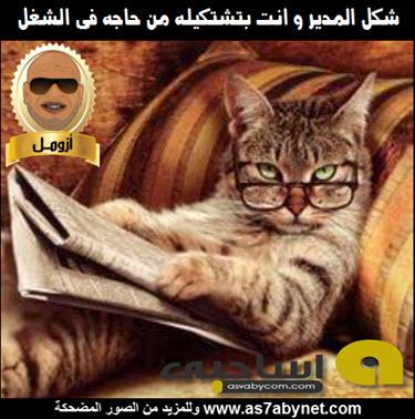 ��� ����� ����� ���� ��������� ��� ����� ��� ������ , ������ ������ ����� Asa7be new_1431103351_483.j