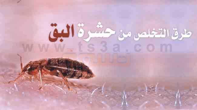 ��� ��� ���� ���� ������ � ����� ���� ���� ���� ���� ������ �� ��� ������ ����� new_1431518734_586.j