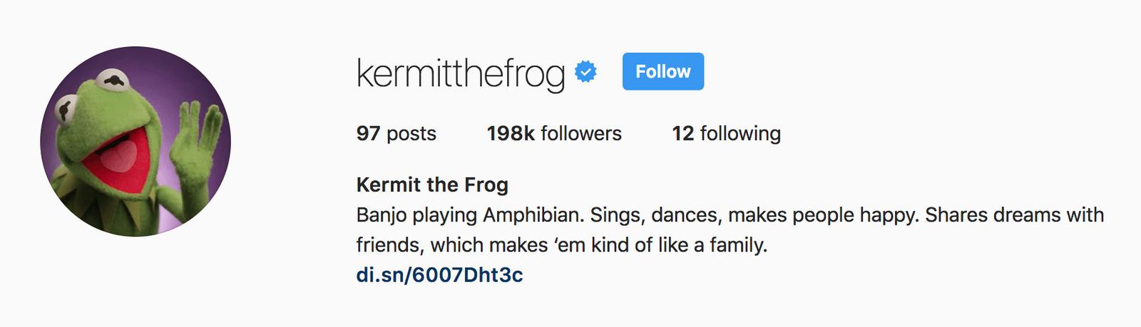kermit-the-frog-cute-instagram-bios.png