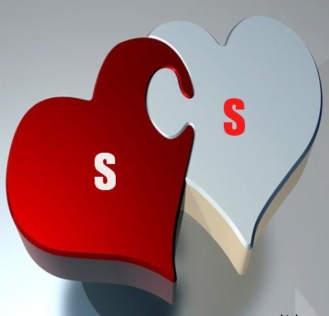 صور حرف S و S مع بعض خلفيات مزخرفة لحرف S مع S حرفى الاس مع الاس نفسه صقور الإبدآع