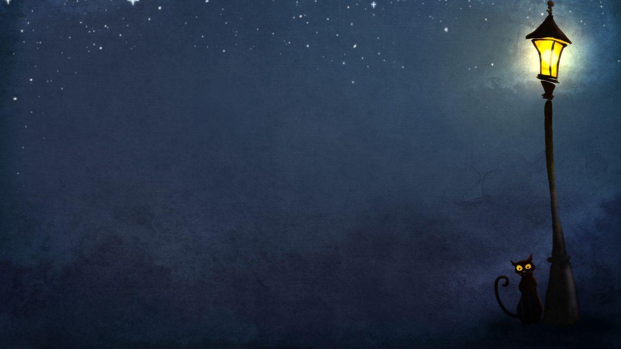 cat_night_lights_74375_1280x720.jpg