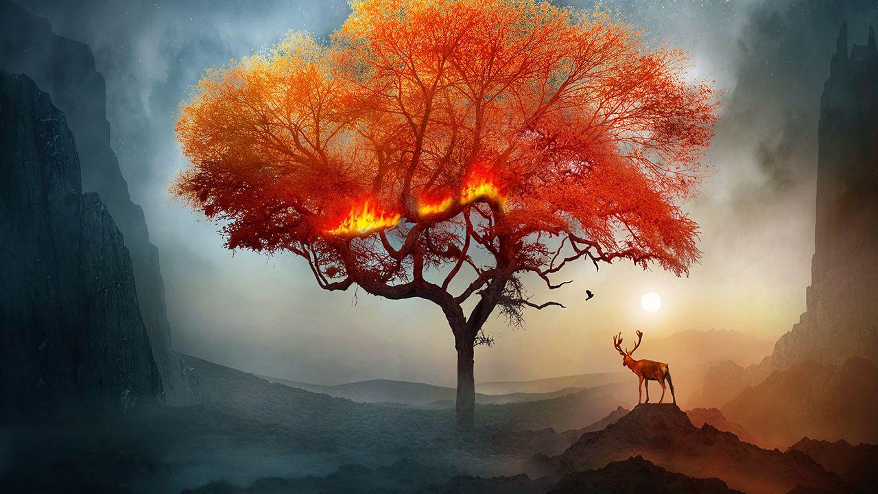 deer_tree_art_131315_1280x720.jpg