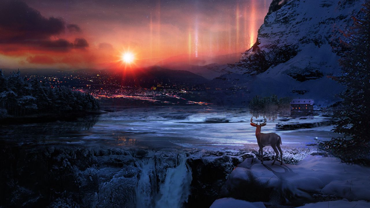 deer_winter_night_129602_1280x720.jpg