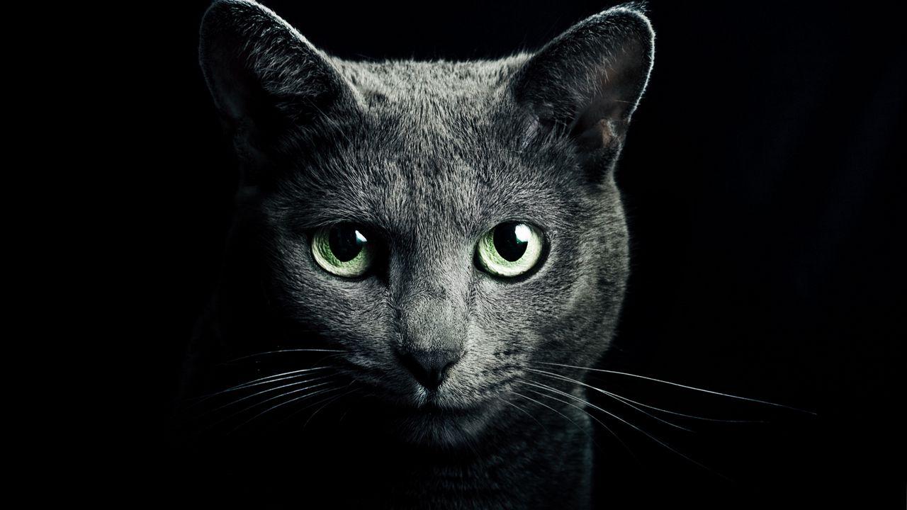 ue_eyes_green_eyes_black_background_81774_1280x720.jpg