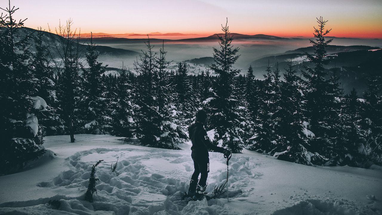 skier_snow_winter_trees_118571_1280x720.jpg