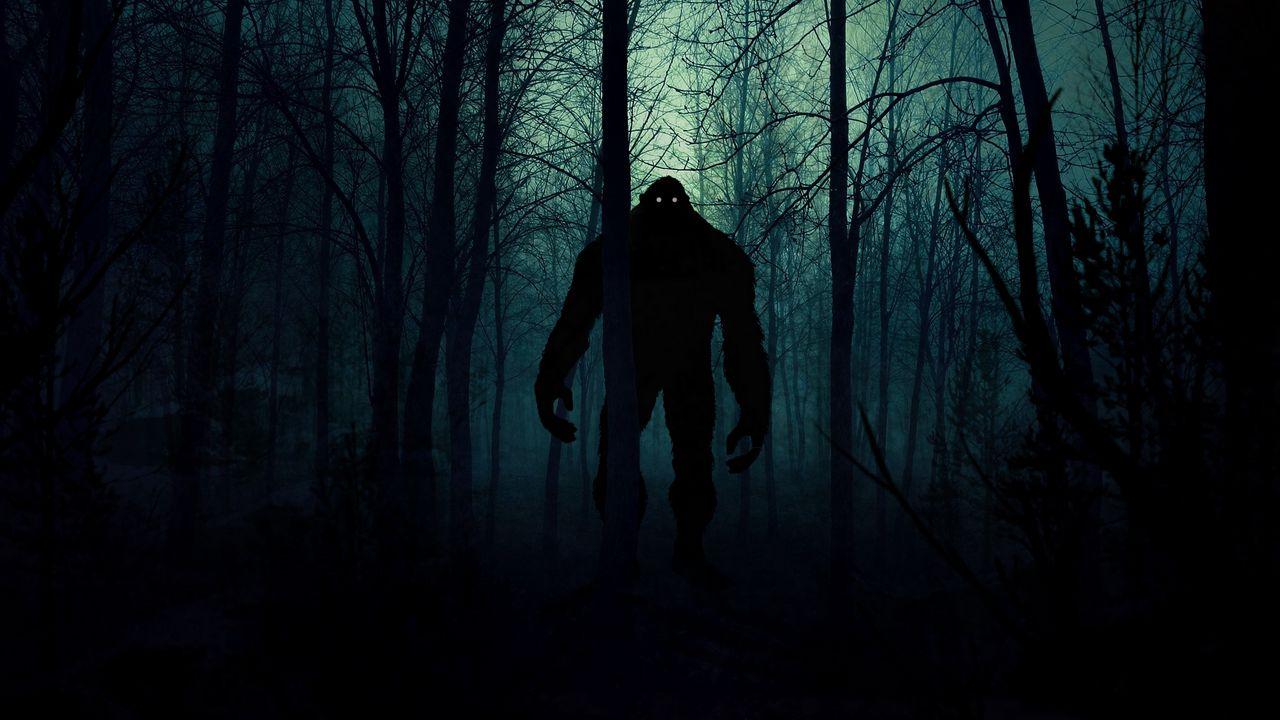 monster_silhouette_forest_131112_1280x720.jpg