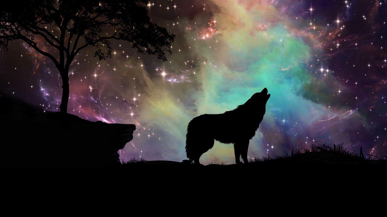 wolf_starry_sky_silhouette_art_117253_1280x720.jpg