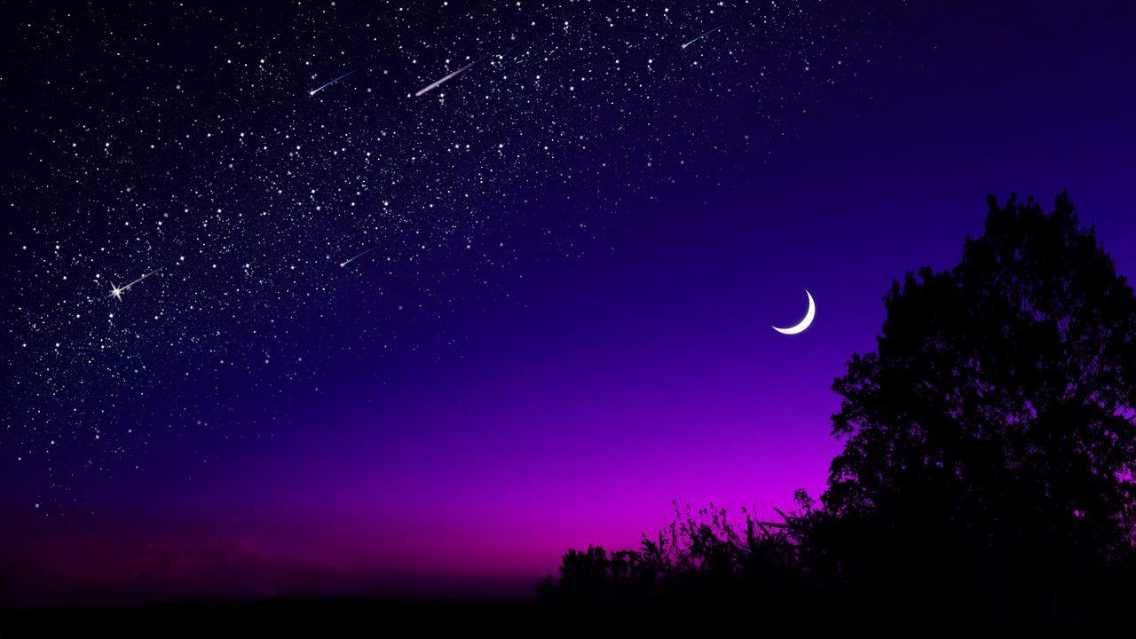 moon_tree_starry_sky_132139_1280x720.jpg