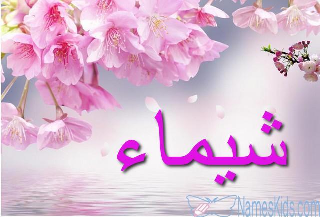 دلع اسم شيماء اروع القاب لاسم شيماء معنى وصفات ودلع اسم شيماء 2021 صقور الإبدآع