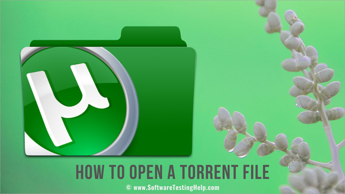 How-to-Open-a-Torrent-File-1.jpg