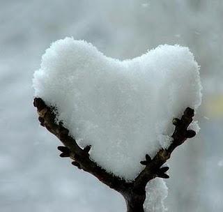 photos_winter_cold_08.jpg