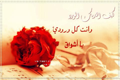 2015_1417403914_729.jpg