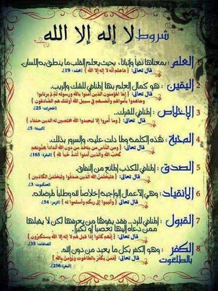 شروط لا إله إلا الله الثمانية المحبة ونواقضها صقور الإبدآع