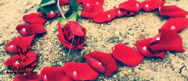 غلاف فيس بوك حب ورومانسية 2013_1370953653_651.