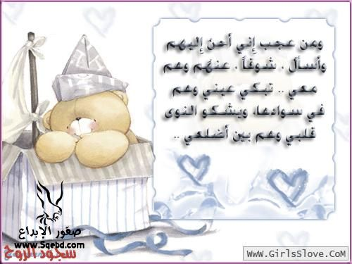 ���� ������� ��������- ���� ����� ������ ������ 2013_1372554683_618.