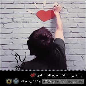 ���� ����� ������ ������ - ����� ���� ����� ������� 2013_1372640132_182.