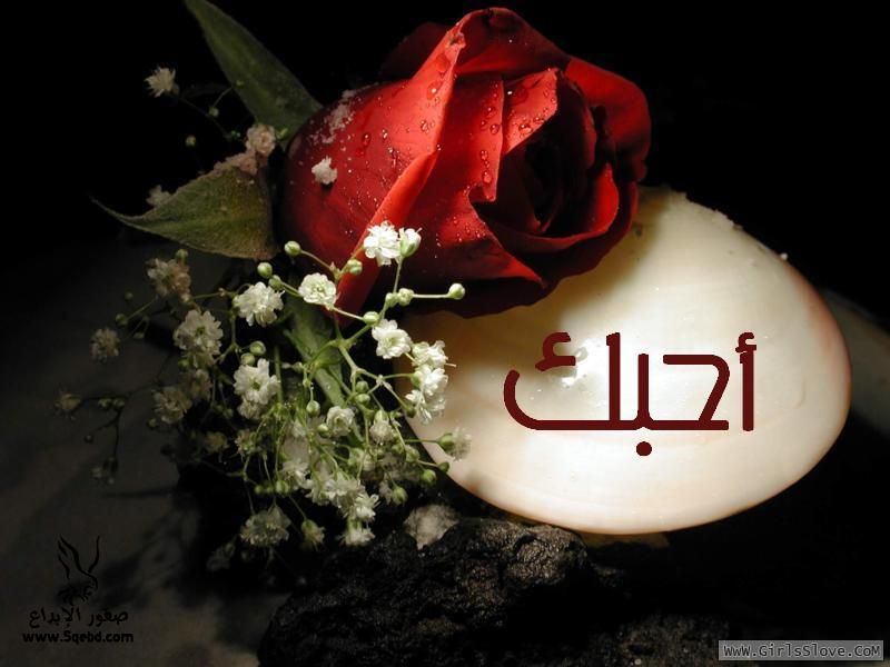 صور حب وغرام جديدة- صور للعشاق - صور مشاعر - صور عاطفه 2013_1372814112_349.